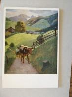 Austria  -Aus Dem LUNGAU Im Salzburger Land   C. Krall - Cow Kühe Vaches   D116558 - Paintings