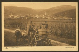 RIQUEWIHR Les Vendanges (CAP) Haut Rhin (68) - Riquewihr
