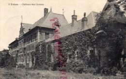 59 - TRELON - LE CHATEAU DES CARMES