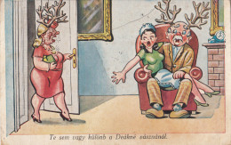 Wife Catch Husband With Mistress Domastic Comic Satire Postcard 48 - Humour