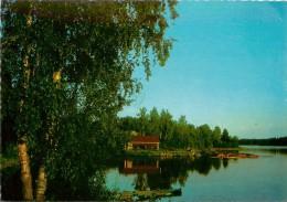 SUOMI      PAYSAGE  LAC - Finlande