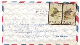 JAMAICA 1981 - AEREOGRAMMA  AFFRANCATURA PICCHIO WOODPECKER 50c - Picchio & Uccelli Scalatori