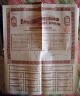 Capillitas Consolidated Mines     1909 - Mines