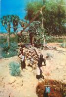CPSM        Djibouti  Systeme D'irrigation Puits à Balancier      P  1970 - Djibouti