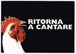 M1690 Cartolina Pubblicitaria - Bergolo (Cuneo) - Torna A Cantare - Cante' Magg / Non Viaggiata - Advertising