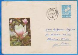FLOWERS MAGNOLIE ROMANIA  POSTAL STATIONERY 1969 - Pflanzen Und Botanik