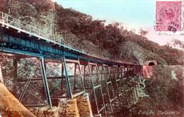 Brasilien - Sao Paulo - EDICAO MALUSARDI - Eisenbahnviadukt, 100 Reis Marke, Gelaufen 1919 - São Paulo