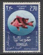 Somalie Y/T 17 (**) - Somalie (1960-...)