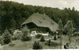 CP.   HERRENALB.  SCHWARZWALDHAUS - Bad Herrenalb