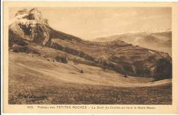 Le Plateau Des PETITES-ROCHES  -  La Dent De Crolles  Au Fond Le Mont Blanc  136 - France