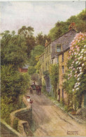 A R QUINTON - 2399 - SALCOMBE - BAKERS WELL - Quinton, AR