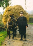 "IRELAND Irlande Farmer With Hay Cart (fermier Charrette De Foin) (Timbre Stamp ""EIRE  Narcissus Founding"")*PRIX FIXE - Non Classés"