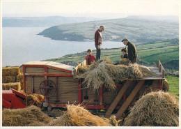 IRELAND Irlande  Treshing In Ireland (Battage Moissonneuse-batteuse ; Agriculture ) *PRIX FIXE - Non Classés