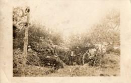 CPA 213 - MILITARIA - Carte Photo - Soldats / Militaires Du 45e R.a.c En Foret De HESSE / Canon De 75 / Argonne - Personnages