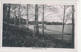 THE LAKE HAMILTON - Etats-Unis