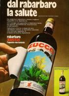 # RABARBARO ZUCCA 1960s Advert Pubblicità Publicitè Reklame Food Drink Liquor Liquore Liqueur Licor Alcohol Bebidas - Manifesti