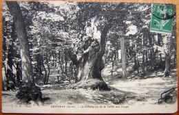 Cpa CHATENAY 925 Le Chataignier De La Vallée Aux Loups - Chatenay Malabry