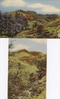 FAN FRYNYCH - 2 CARDS - Breconshire