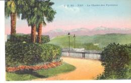 POSTAL    PAU -FRANCIA-  CADENA DE LOS PIRINEOS - Pau