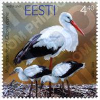 Ref. 145479 * MNH * - ESTONIA. 2004. FAUNA . FAUNA - Estland