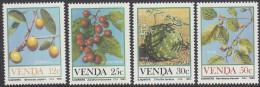 VENDA, 1985 FRUITS 4 MNH - Venda