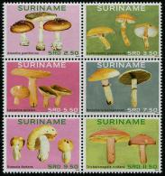 Suriname - Surinam (2014)  - Set - /  Mushrooms - Funghi - Champignon - Pilze - Champignons