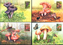 Belarus 2013 Mushrooms Mushroom 4 MaxiCards MC - Belarus