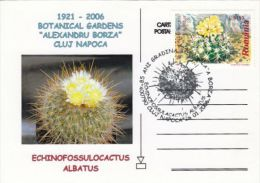 CACTUSS, CM, MAXICARD, CARTES MAXIMUM, 2005, ROMANIA - Sukkulenten