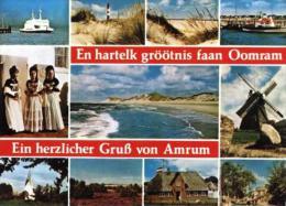 AK0822 Ein Herzlicher Gruß Von Amrum, Versch. Ansichten 1980 - Germania