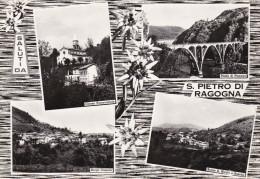 Cartolina SAN PIETRO DI RAGOGNA (provincia Di Udine) - Udine