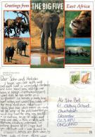 The Big Five Animals, Kenya Postcard Posted 1990s Stamp - Kenya
