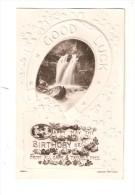 """CPA : Happy Birthday . Photo Cascade Dans Fer à Cheval """" Good Luck"""" ( Papier Gaufré [ Adressée à Un Soldat Guerre 14/18] - Anniversaire"""