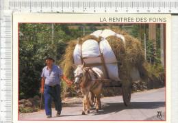 ATTELAGE  - La Rentrée Des Foins -  Les Pyrénées - Attelages