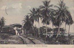 Amérique - Costa Rica - Pontette - Northern Railway - Chemins De Fer Train - Costa Rica