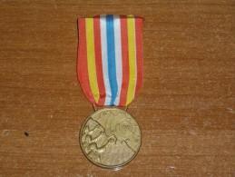 Medaglia Di Benemerenza Campania E Basilicata 1980 - Italia