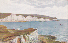 PC The Seven Sisters Near Seaford (2546) - England