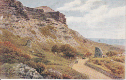 PC Isle Of Wight - Niton - The Undercliff - 1929 (2563) - England