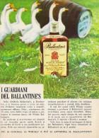 # BALLANTINE´s SCOTCH WHISKY 1960s Advert Pubblicità Publicitè Reklame Drink Liquor Liquore Liqueur Licor Alcohol Bebida - Posters
