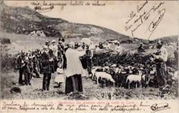 Bénédiction Des Moutons Après La Tonte En Corse - Autres Communes