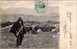 Berger Corse Et Son Troupeau - Cardinali - Autres Communes