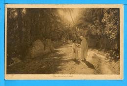 CP, Une Rue Dans L'Oasis, Vierge - Algérie