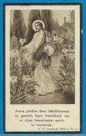 Bidprentje Van E. Zuster Marie Anastasie - Rillaar - Westmalle - 1920 - 1943 - Andachtsbilder
