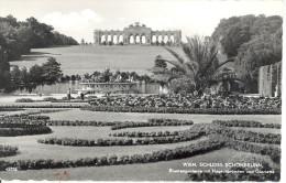 CARTE POSTALE  PHOTOGRAPHIE VERITABLE   WIEN SCHLOSS SCHONBRUNN - Château De Schönbrunn