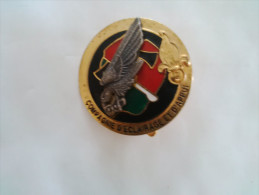 Legion Etrangere Insigne 3eme REI Cea Matriculé - Army