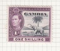 KING GEORGE VI - 1938 - Gambia (...-1964)