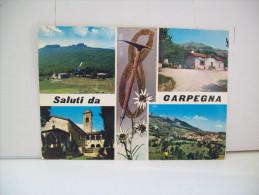 "Saluti Da ""Carpegna"" PU  ""Marche"" (Italia) - Pesaro"