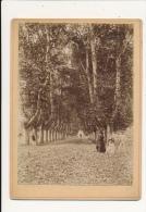 VILLENEUVE SUR LOT 47  - Photo Ancienne Contrecollée Sur Carton Fort - Fotos