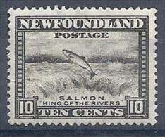 140012118  NEWFOULAND/TERRANOVA  YVERT  Nº  179A  D 12 1/2  */MH - 1908-1947