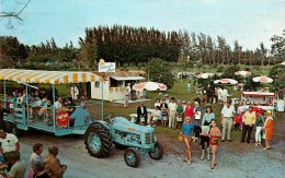 PALM BEACH         LARGEST ATTRACTION     TRACTEUR - Palm Beach
