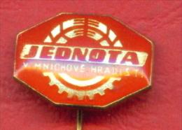 F2198 / JEDNOTA - V MNICHOVE HRADISTI - Czechoslovakia Tchecoslovaquie Tschechoslowakei - Badge Pin - Marche